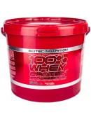 100% Whey Protein Professional (5000 гр.)